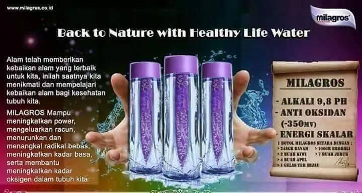 Cara Minum Milagros Untuk Diet Sehat Alami